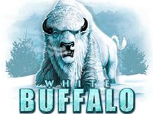 Играйте с бонусами в игровой слот – Белый Буйвол